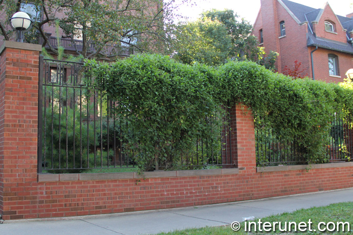 brick fence with green plants on steel sections