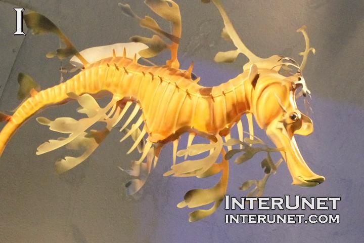 seahorse-sculpture
