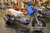 custom-2017-Icebear-Mad-Dog-Bike