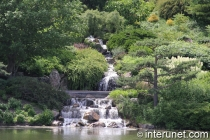 Waterfall in Chicago Botanic Garden