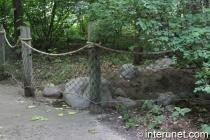 animals-barrier-fence