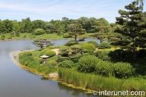 amazing view in Chicago botanic garden