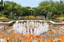beautiful-fountain