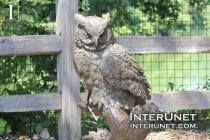 owl-sculpture