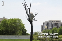 rock-on-the-tree
