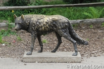 wolf-statue
