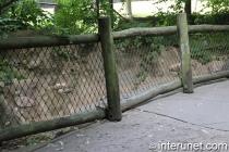 older-logs-fence-on-bridge-sides