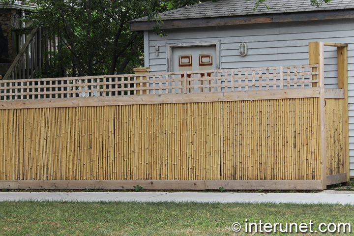 bamboo-fence