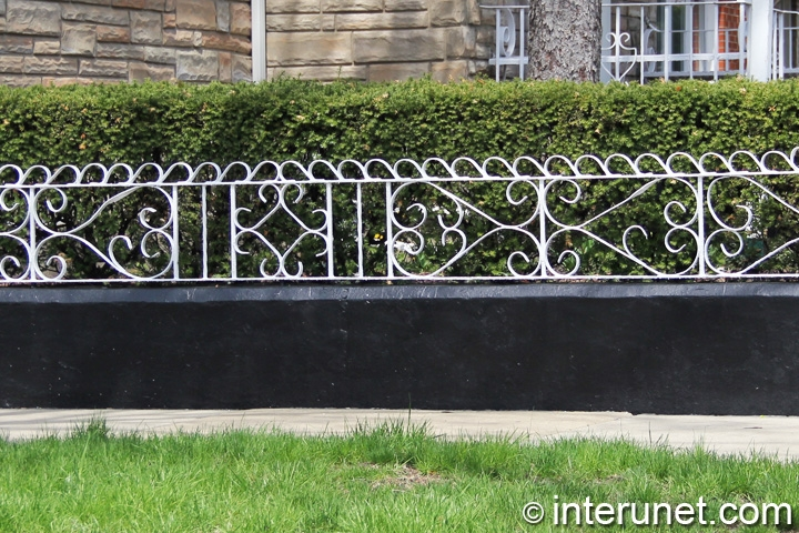 custom-made-fence-in-combination-with-hedge