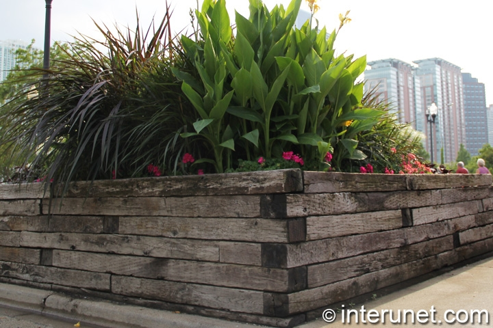lumber fence with green plants