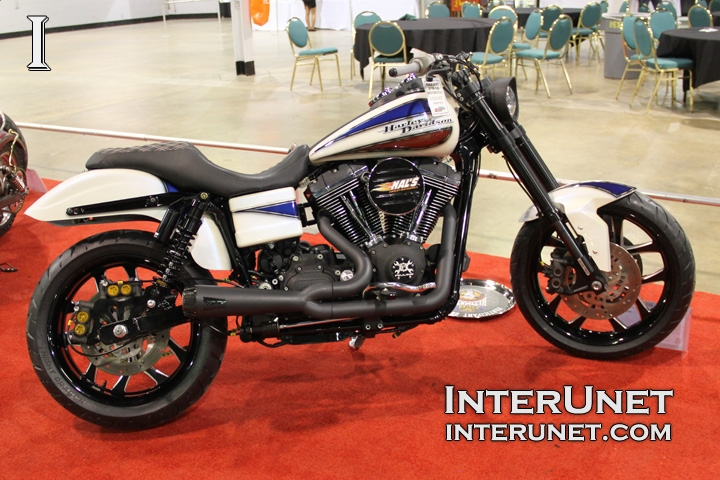 2006-Harley-Davidson-FXDL-Dyna-Low-Rider-custom