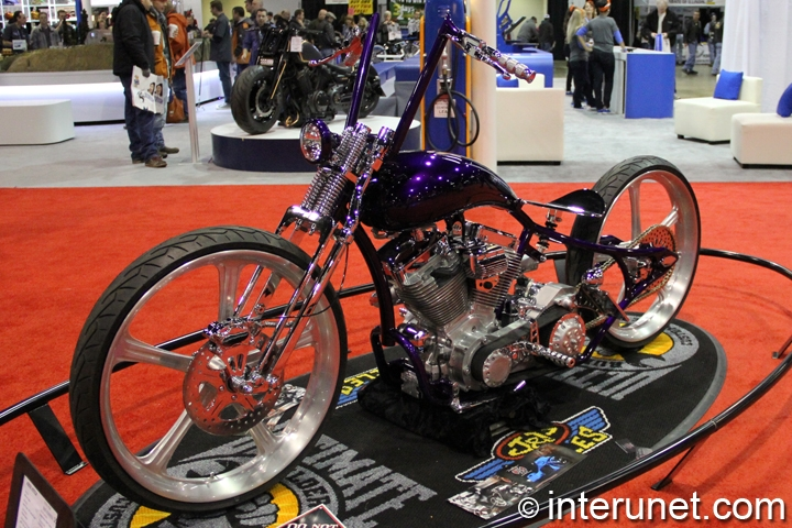 Purple-Bobber-2013-DD-Custom