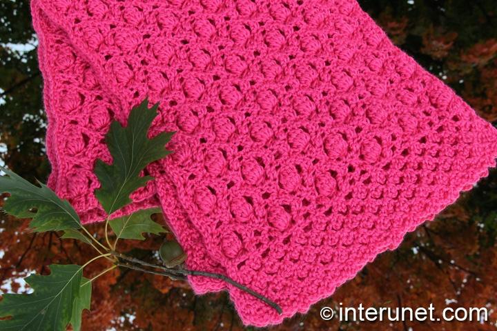 crochet-acorn-raspberry-stitch-combination