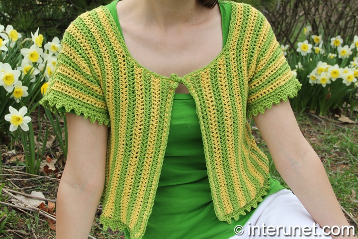short-sleeve-summer-top-crochet-pattern