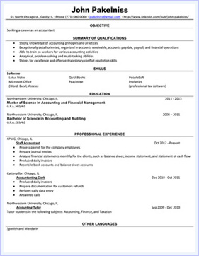 professional resume example - Write A Professional Resume