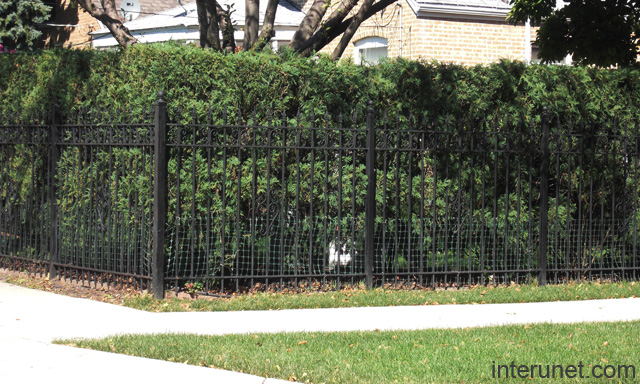 combination metal fence hedge picture interunet